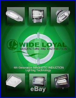 Le Vanier Induction 80W High Bay Lamp Fixture Factory Industry Warehouse